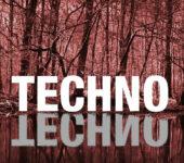 05.06.15 Soli Techno Tanz #2 @ Archiv